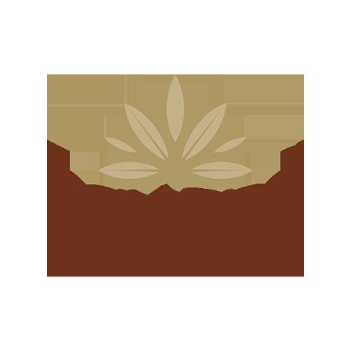 day_spa_logo_westside_bern_500x500